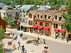 Telluride Properties