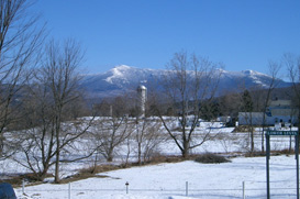 Mountain View VT Real Estate