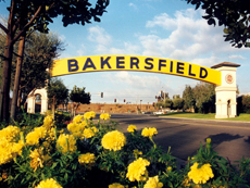 Real Estate Professionals of Bakersfield