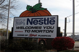 Morton IL Real Estate