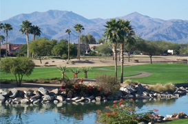 Active Adult Homes AZ Real Estate