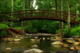 Biltmore Forest and Lake NC Real Estate